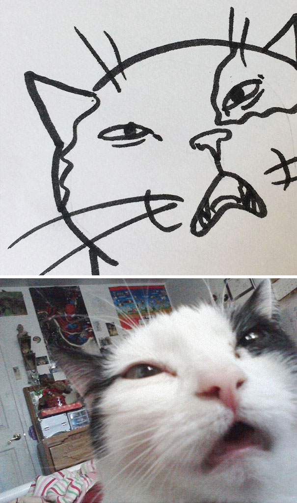 Cara Cat When Your Teacher Keeps Saying You Can't Draw Cats, But
