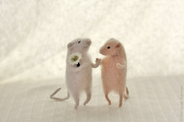 You Will Forgive Them Again And Again Extremely Cute Mice With A