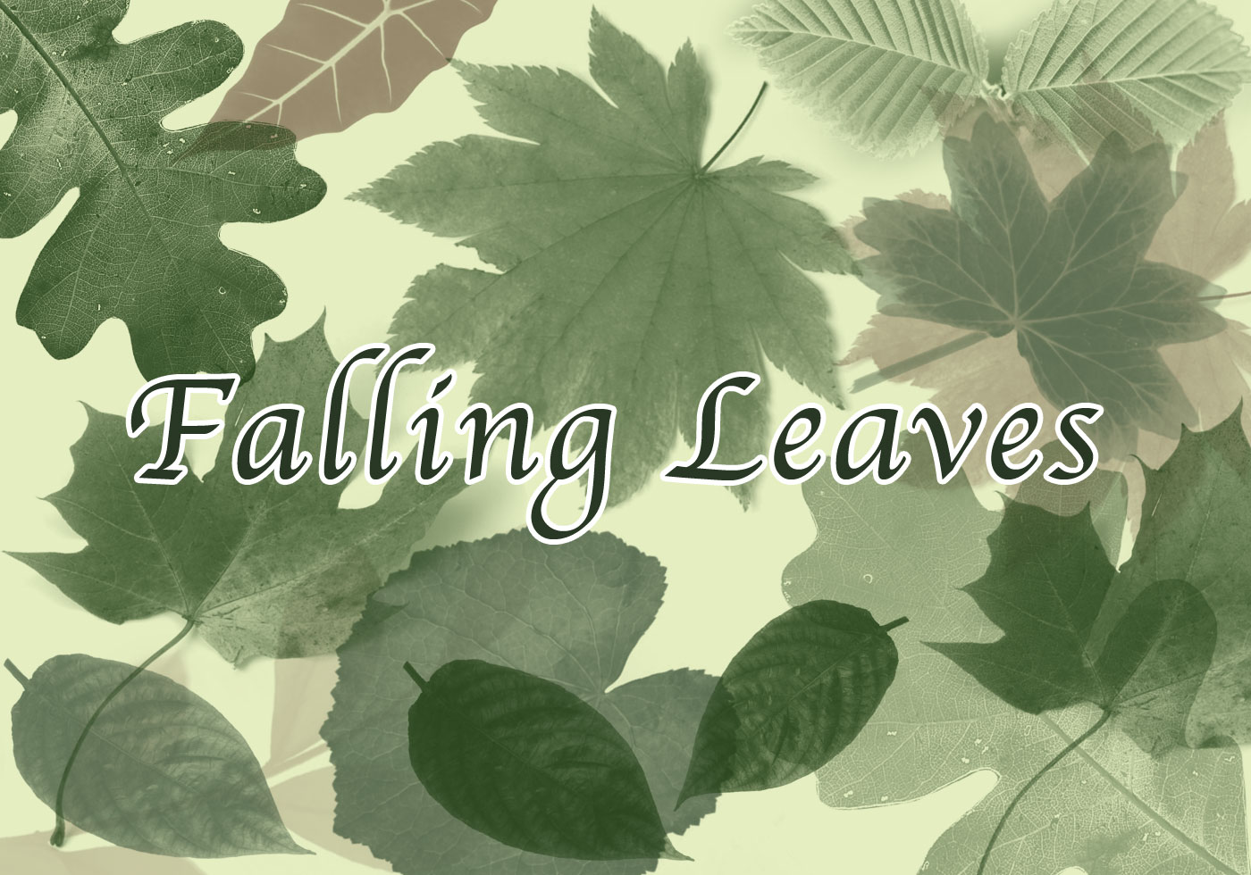 Free Fall Harvest Wallpaper Falling Leaves Free Photoshop Brushes At Brusheezy
