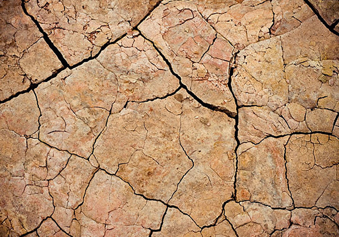 Really Cool 3d Wallpapers Cracked Mud Texture Free Photoshop Brushes At Brusheezy