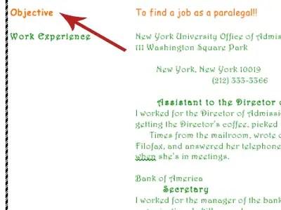 The Worst Resume Ever - Business Insider
