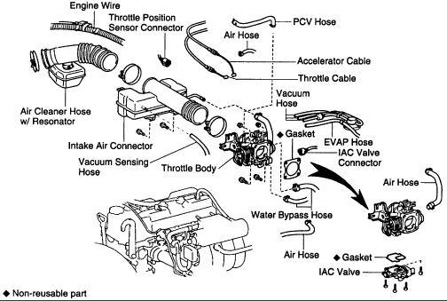 03 Tacoma Engine Diagram Wiring Diagram 2019