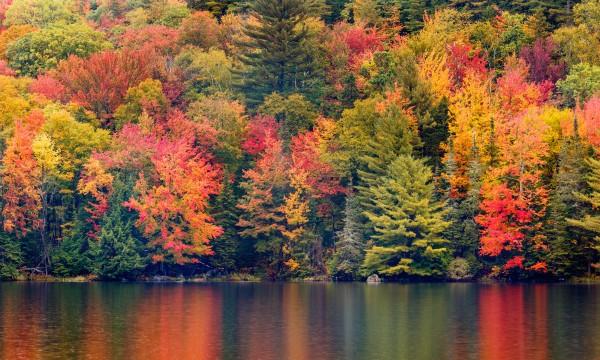 Maine Fall Foliage Wallpaper O 249 Voir Les Plus Beaux Feuillages D Automne Au Canada