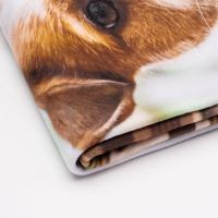 Personalized Dog Blankets. Custom Dog Blankets For Pets ...