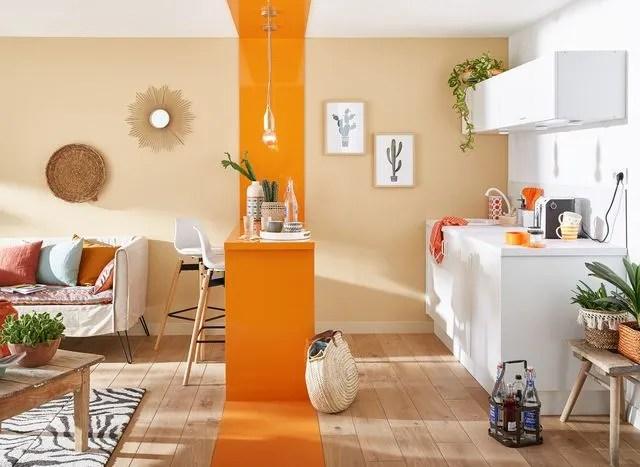 /peinture-de-cuisine-tendance/peinture-de-cuisine-tendance-37