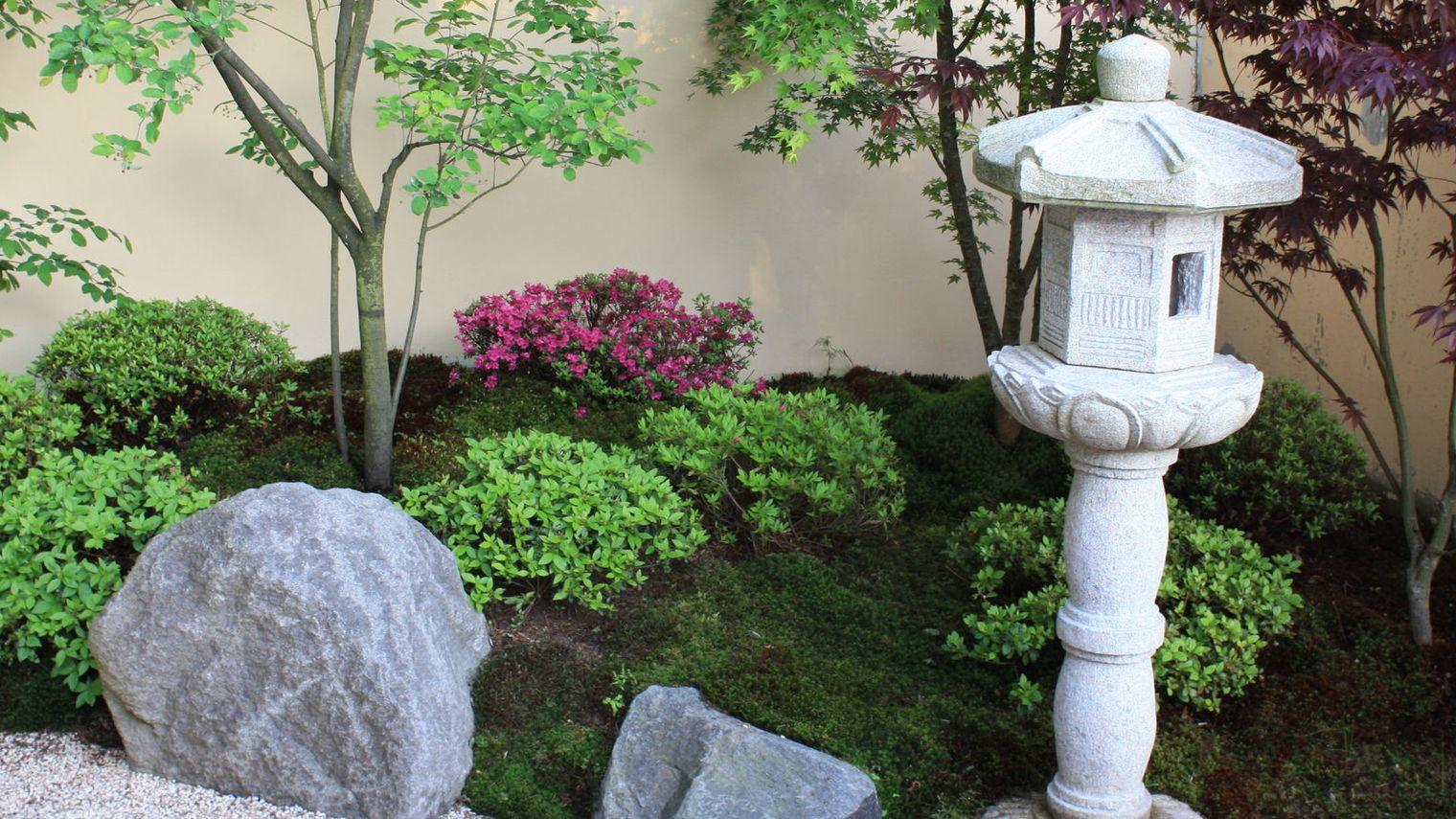 Plantes Pour Jardin Japonais Miniature | Jardin Japonais Miniature