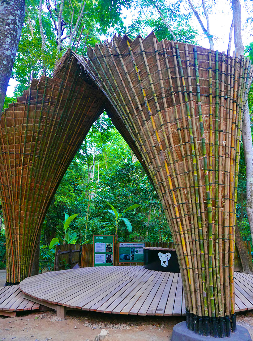 Rattan Diy Bamboo Trees Project By Building Trust And Ateliercole