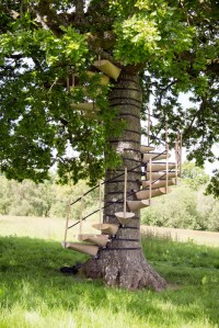 CanopyStair is a spiral staircase that straps around a ...