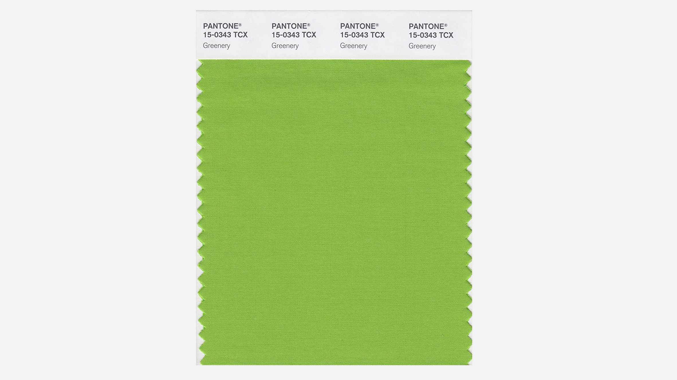 Pantone Color 2016 Pantone Names Greenery Its 2017 Colour Of The Year