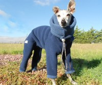 Dog Snowsuit | DudeIWantThat.com