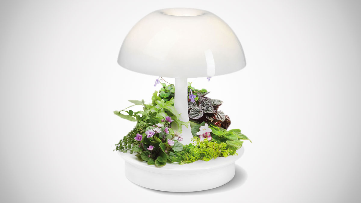 Lamp Plant Ambienta Living Table Lamp