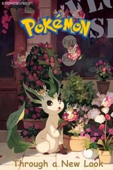 Pokémon - Through a New Look