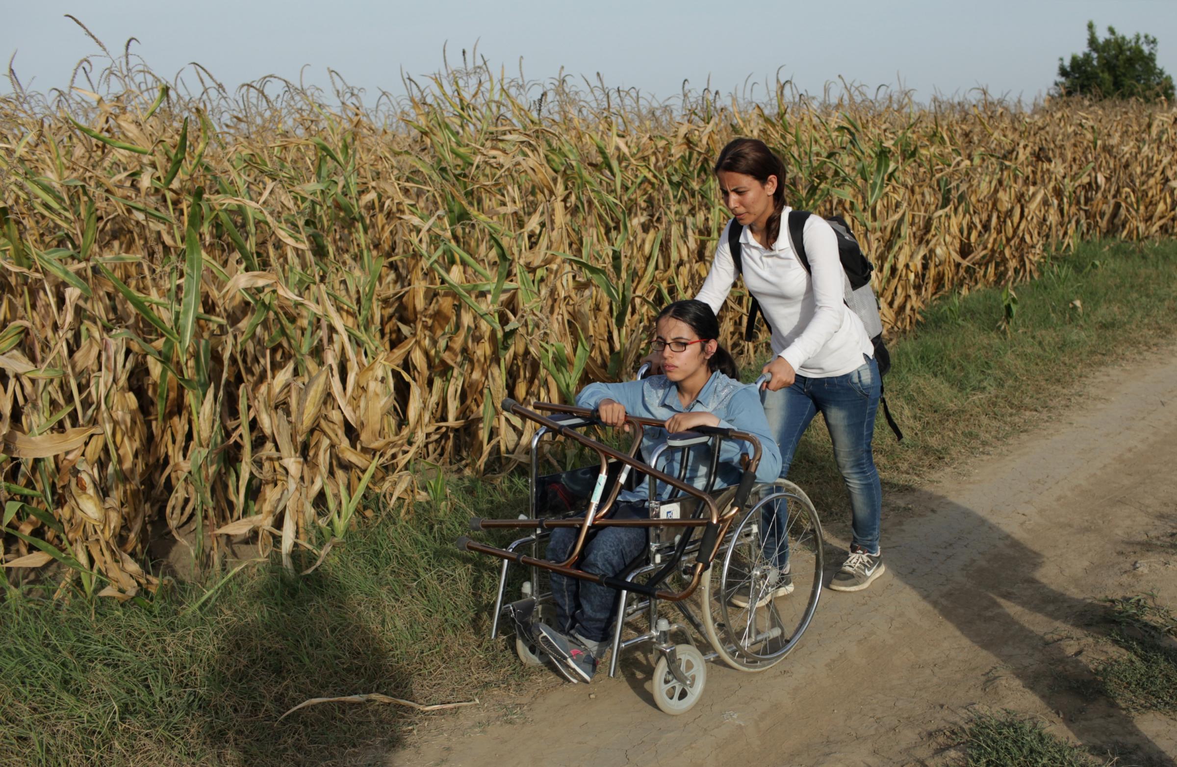 Sedie A Rotelle Roma : Sedia a rotelle roma sedia bimbi ikea immagini designo idea