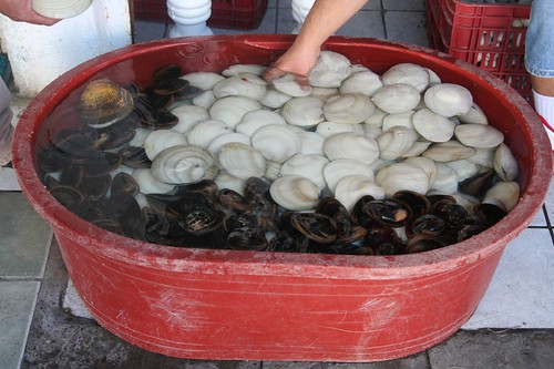 tub of clams