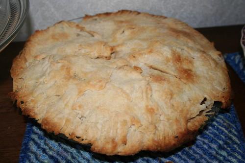 apple pie for Rex