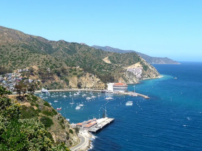 View of Avalon Harbor from road above