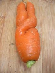 carrot in garuda