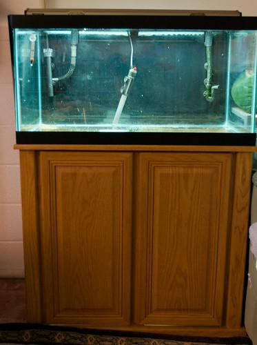 Bye Bye, fish tanks. I?ll miss you. | Meglet Rambles On