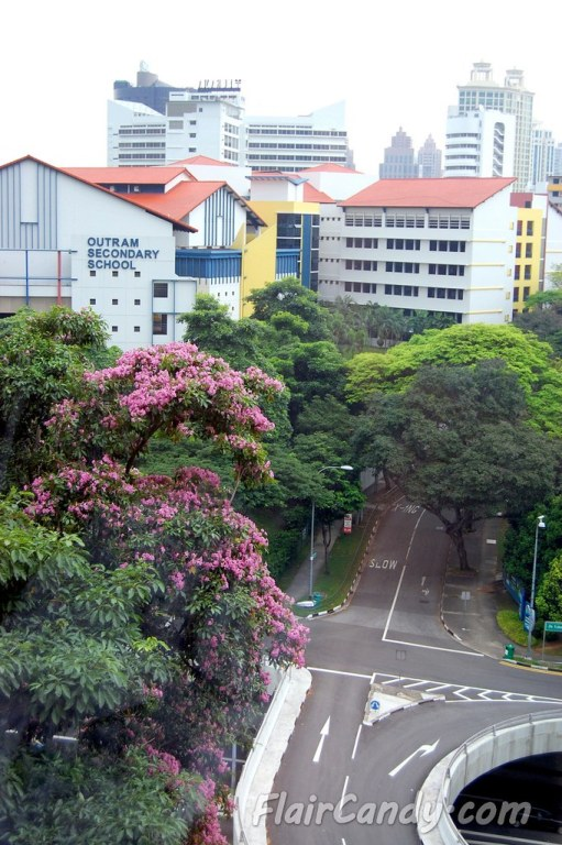 Grand Prix Season Singapore - Day 2 Formula 1 (1)