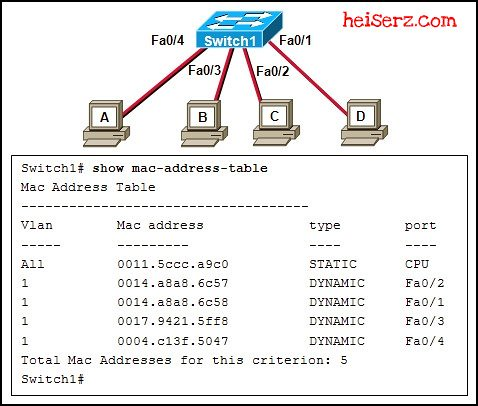 6632756429 e275c494a9 z ENetwork Final Exam CCNA 1 4.0 2012 2013 100%