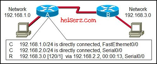 6632482595 99f36c47f0 z ENetwork Chapter 11 CCNA 1 4.0 2012 2013 100%