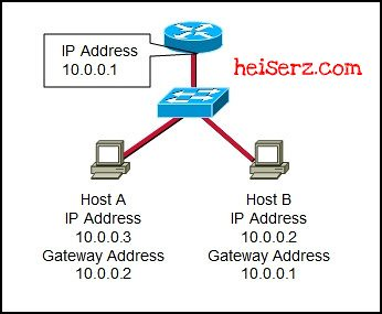 6632410635 6791b1fd85 z ENetwork Chapter 10 CCNA 1 4.0 2012 2013 100%