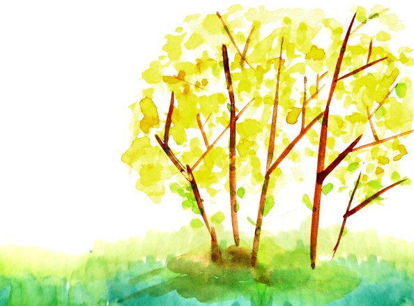 watercolor nature background free PSD