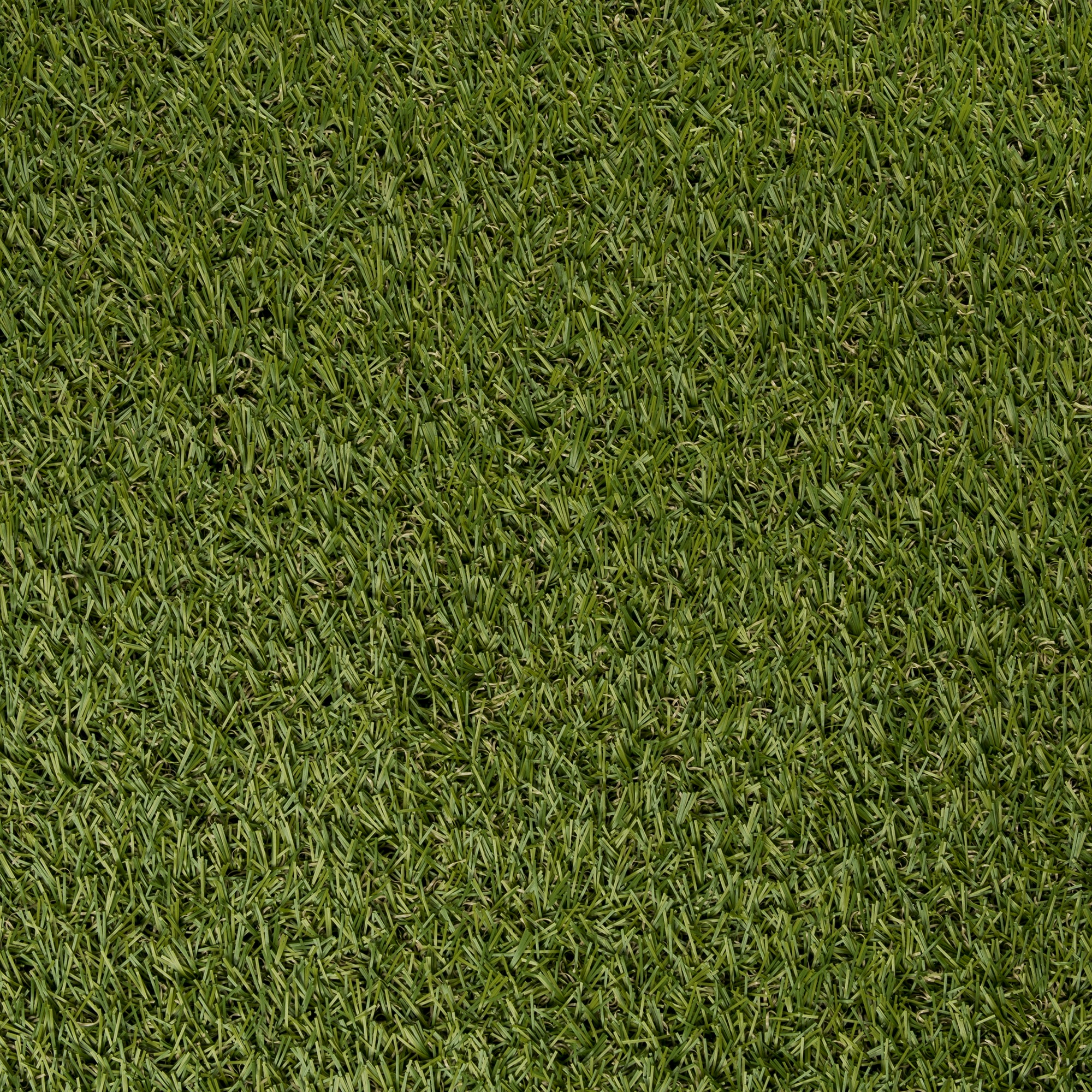 Gazon Synthétique Action Gazon Artificiel Selectgrass 200x300 Cm Gazon