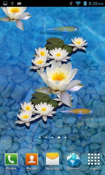 Free 3D fish Pond Live wallpaper APK Download For Android | GetJar