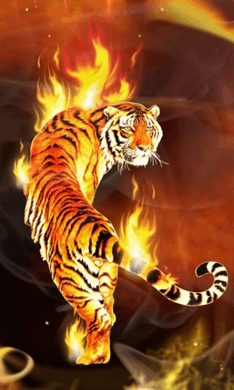 Clemson Tigers Iphone Wallpaper Free Tiger Fire Live Wallpaper Apk Download For Android