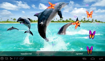 Free 3D Dolphin Live Wallpapers APK Download For Android | GetJar