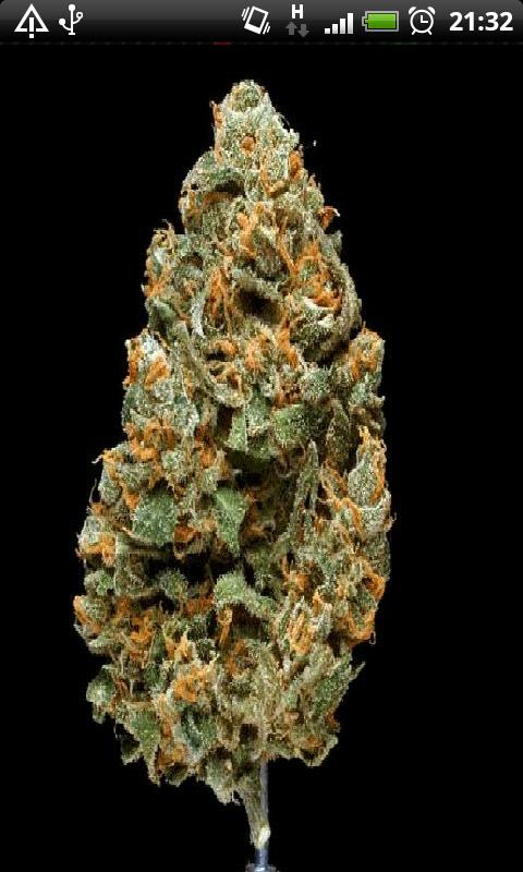 3d Wallpaper Home Screen Free Weed Chronic In 3d Live Wallpaper Apk Download For