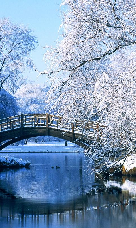 Snow Falling Live Wallpaper Download Free Winter Landscapes Wallpapers Apk Download For Android