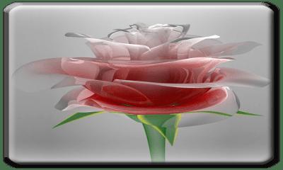 Free Love Rose Live Wallpaper HD APK Download For Android | GetJar