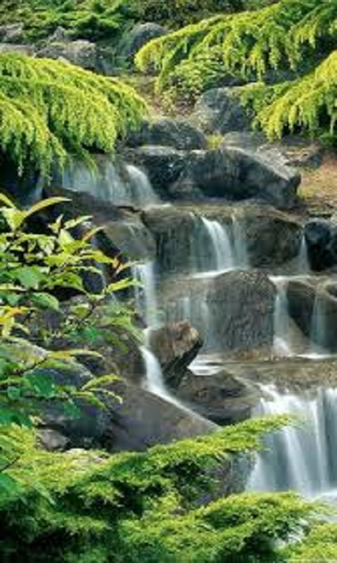 Live Wallpaper Fall Hd Free Waterfall Lock Screen Hd Apk Download For Android