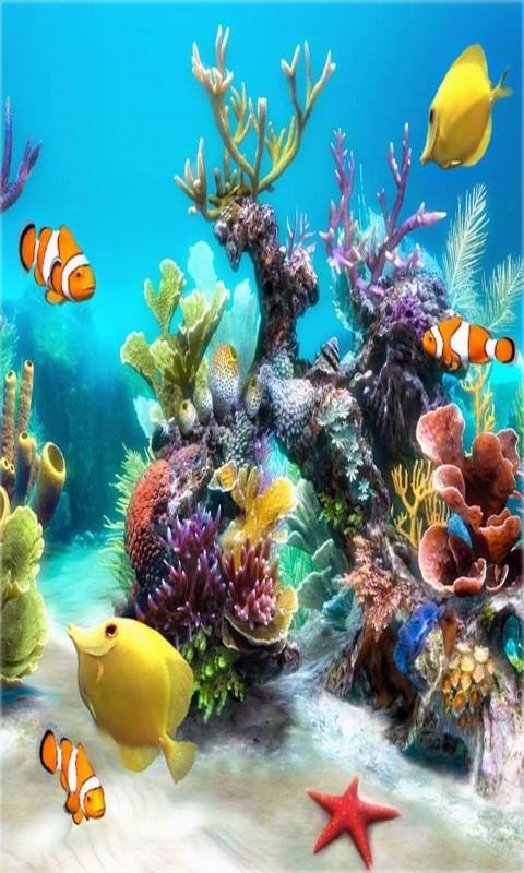 Download 3d Wallpaper Apk Free Aquarium Live Wallpaper Frames Apk Download For