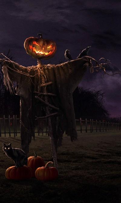 Free Spooky Halloween Live Wallpaper APK Download For Android   GetJar