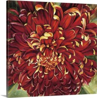 Chrysanthemum Wall Art, Canvas Prints, Framed Prints, Wall ...