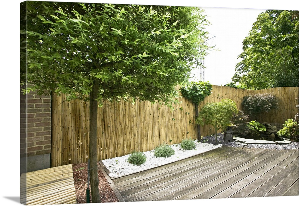 Feng Shui Toulouse Feng Shui Urban Garden With A Willow Tree, Belgium Wall