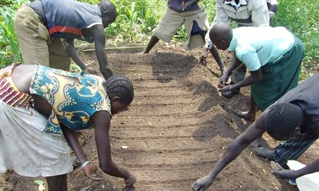 MDG People plant seeds in South Sudan