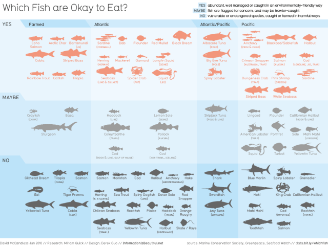 Information is Beautiful: Which fish are good to eat? Visualised
