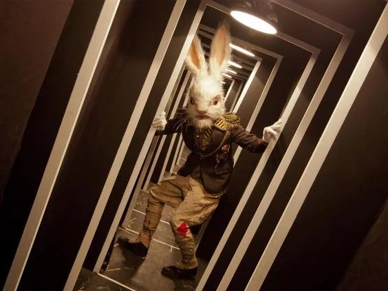 Falling Down The Rabbit Hole Wallpaper Alice S Adventures Underground The Vaults Review