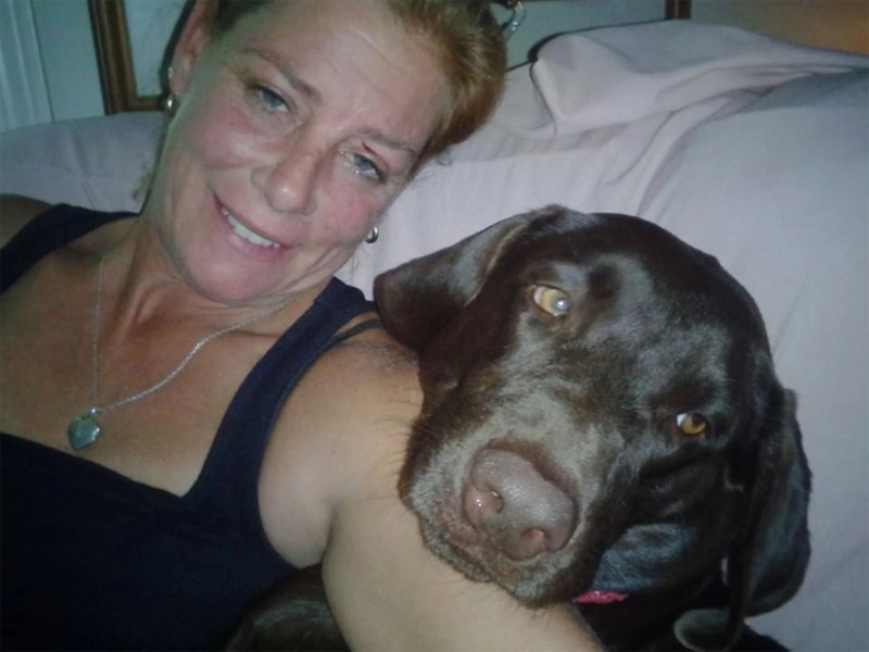 Large Of Katie Brown Dog