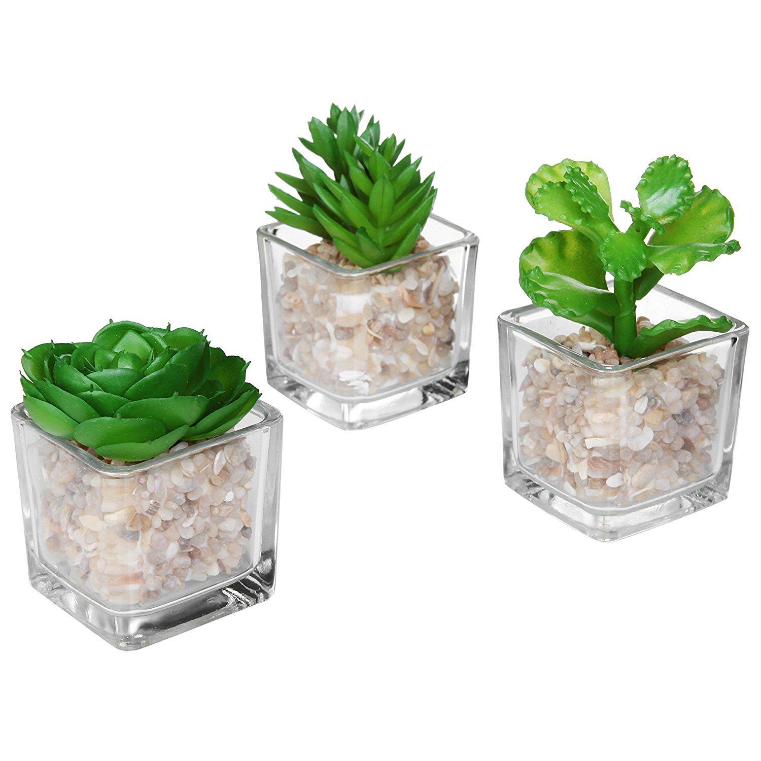Mini Plant Pots Bulk Modern Clear Glass Planter Pot Faux Plants