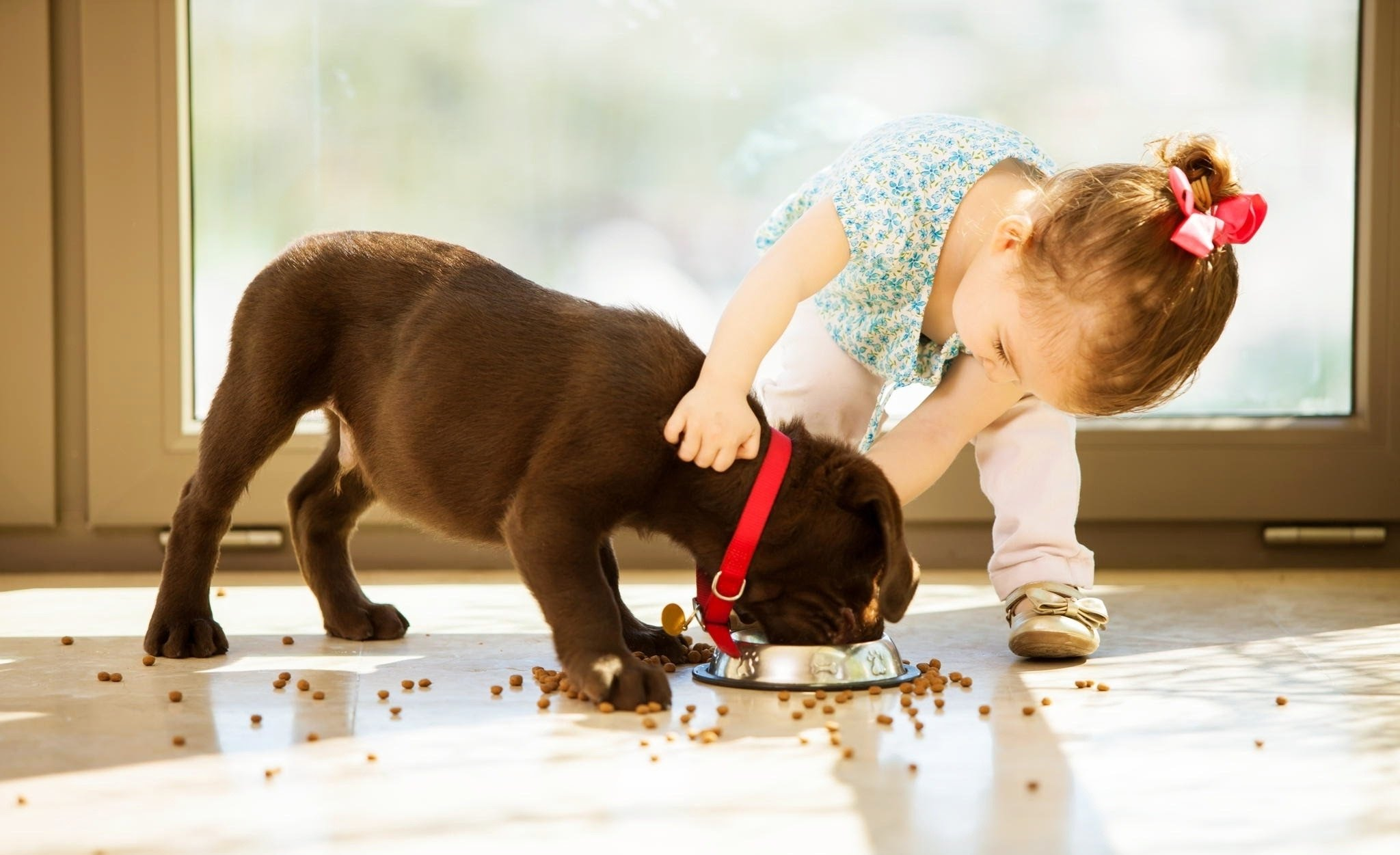 Super Cute Little Baby Wallpapers Love At First Lick The Cuddliest Baby Amp Dog Bff Photos