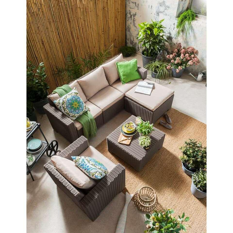 Allibert Salon De Jardin California Allibert Fauteuil California Couleur Cappuccino