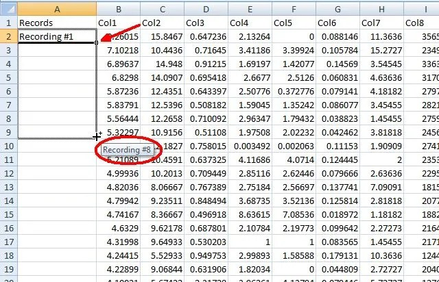 5 Microsoft Word  Excel Skills You Must Have to Succeed at the Office