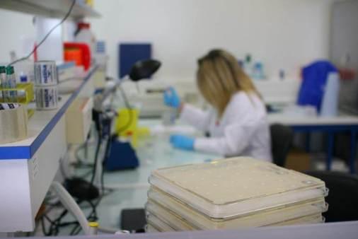 Les bureaux de la société de biotechnologie Davolterra, spécialiste de l'antibiorésistance