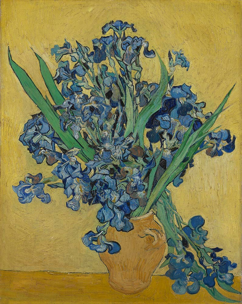 Art Illustration Vincent Van Gogh His Life In Art The Museum Of Fine Arts Houston