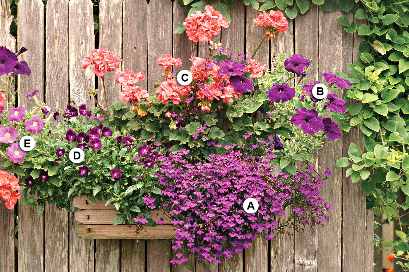 Unique Outdoor Flower Pots Container Gardening 101